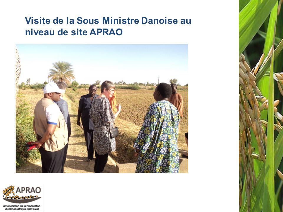 59 Visite de la Sous Ministre Danoise au niveau de site APRAO