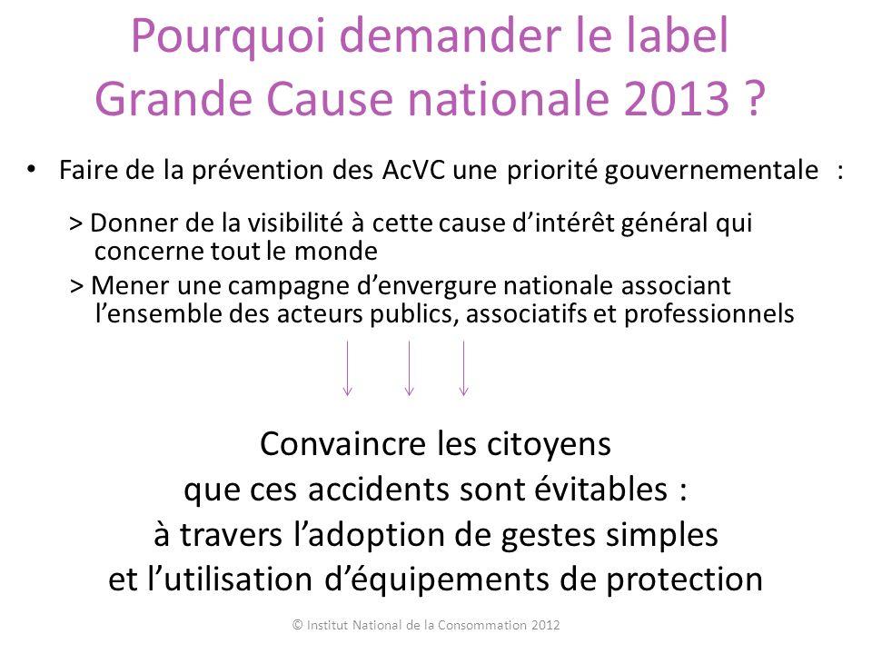 Pourquoi demander le label Grande Cause nationale 2013 ? Faire de la prévention des AcVC une priorité gouvernementale : > Donner de la visibilité à ce