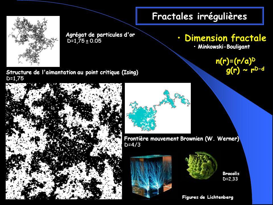 Fractales irrégulières Dimension fractale Minkowski-Bouligant n(r)=(r/a) D g(r) ~ r D-d Agrégat de particules d or D=1,75 ± 0.05 Structure de l aimantation au point critique (Ising) D=1,75 Frontière mouvement Brownien (W.