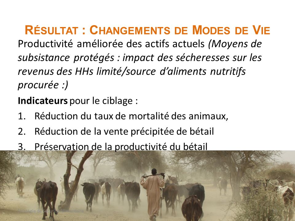 R ÉSULTAT : C HANGEMENTS DE M ODES DE V IE Productivité améliorée des actifs actuels (Moyens de subsistance protégés : impact des sécheresses sur les revenus des HHs limité/source daliments nutritifs procurée :) Indicateurs pour le ciblage : 1.Réduction du taux de mortalité des animaux, 2.Réduction de la vente précipitée de bétail 3.Préservation de la productivité du bétail 15Stratégie de Sécurité Alimentaire