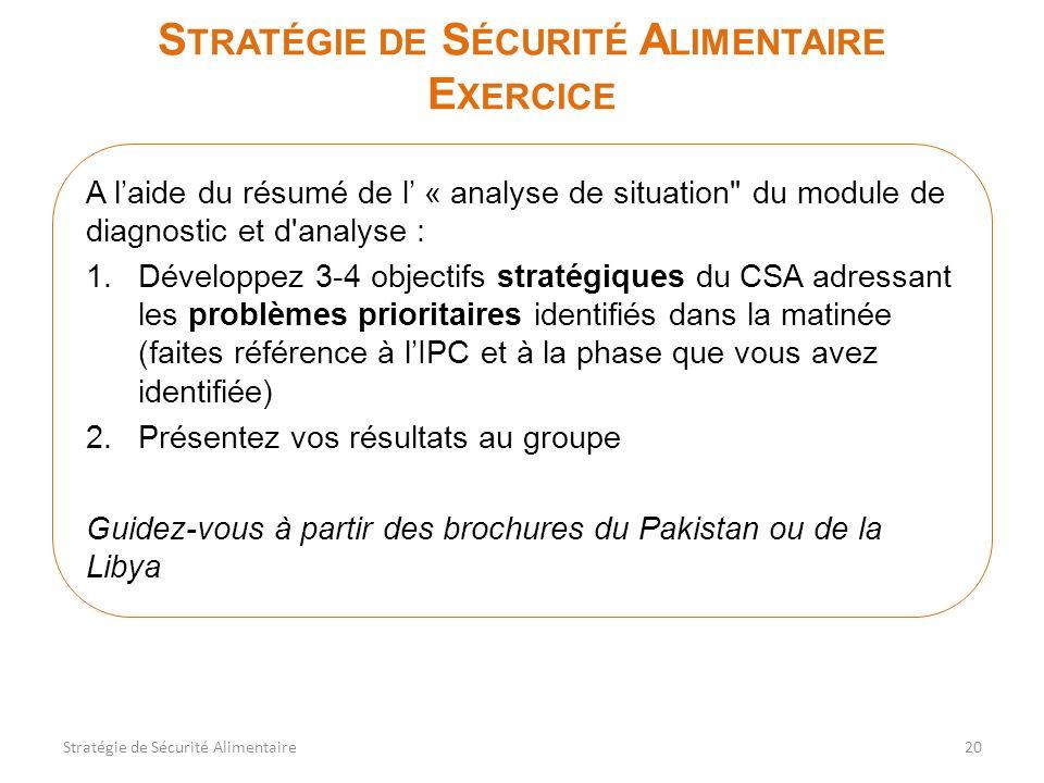 S TRATÉGIE DE S ÉCURITÉ A LIMENTAIRE E XERCICE A laide du résumé de l « analyse de situation du module de diagnostic et d analyse : 1.Développez 3-4 objectifs stratégiques du CSA adressant les problèmes prioritaires identifiés dans la matinée (faites référence à lIPC et à la phase que vous avez identifiée) 2.Présentez vos résultats au groupe Guidez-vous à partir des brochures du Pakistan ou de la Libya 20Stratégie de Sécurité Alimentaire