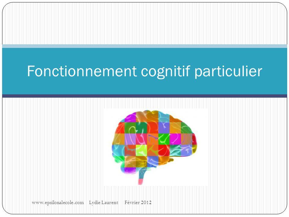 Fonctionnement cognitif particulier