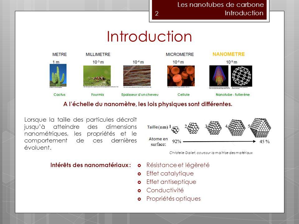 2 Les nanotubes de carbone Introduction A léchelle du nanomètre, les lois physiques sont différentes.