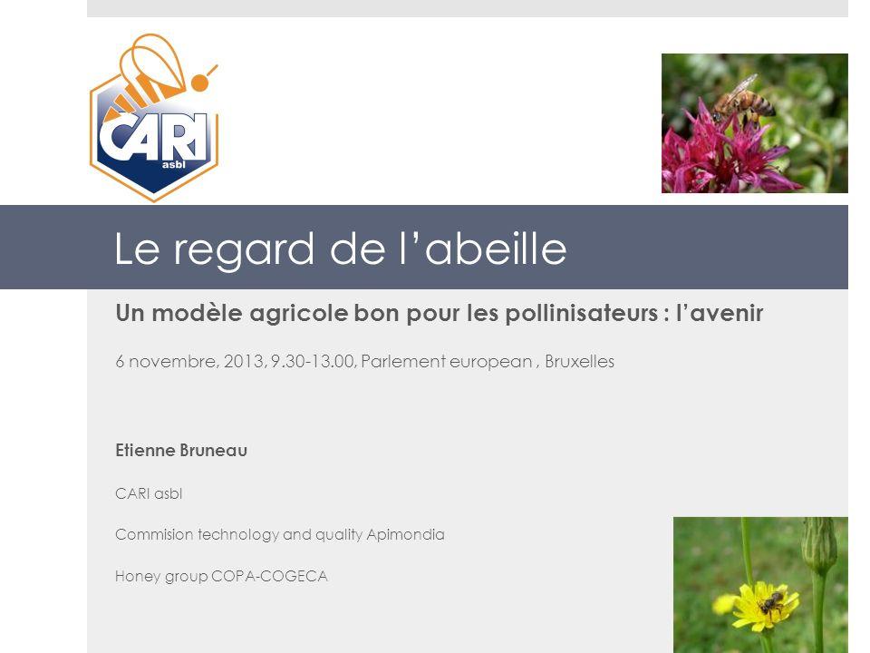 Le regard de labeille Un modèle agricole bon pour les pollinisateurs : lavenir 6 novembre, 2013, 9.30-13.00, Parlement european, Bruxelles Etienne Bru