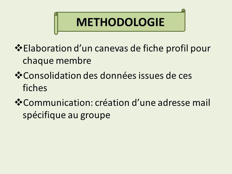 Elaboration dun canevas de fiche profil pour chaque membre Consolidation des données issues de ces fiches Communication: création dune adresse mail spécifique au groupe METHODOLOGIE