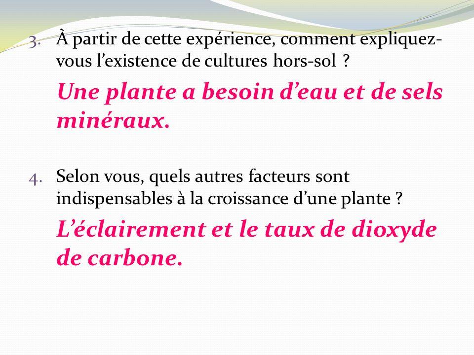 3.À partir de cette expérience, comment expliquez- vous lexistence de cultures hors-sol ? Une plante a besoin deau et de sels minéraux. 4.Selon vous,