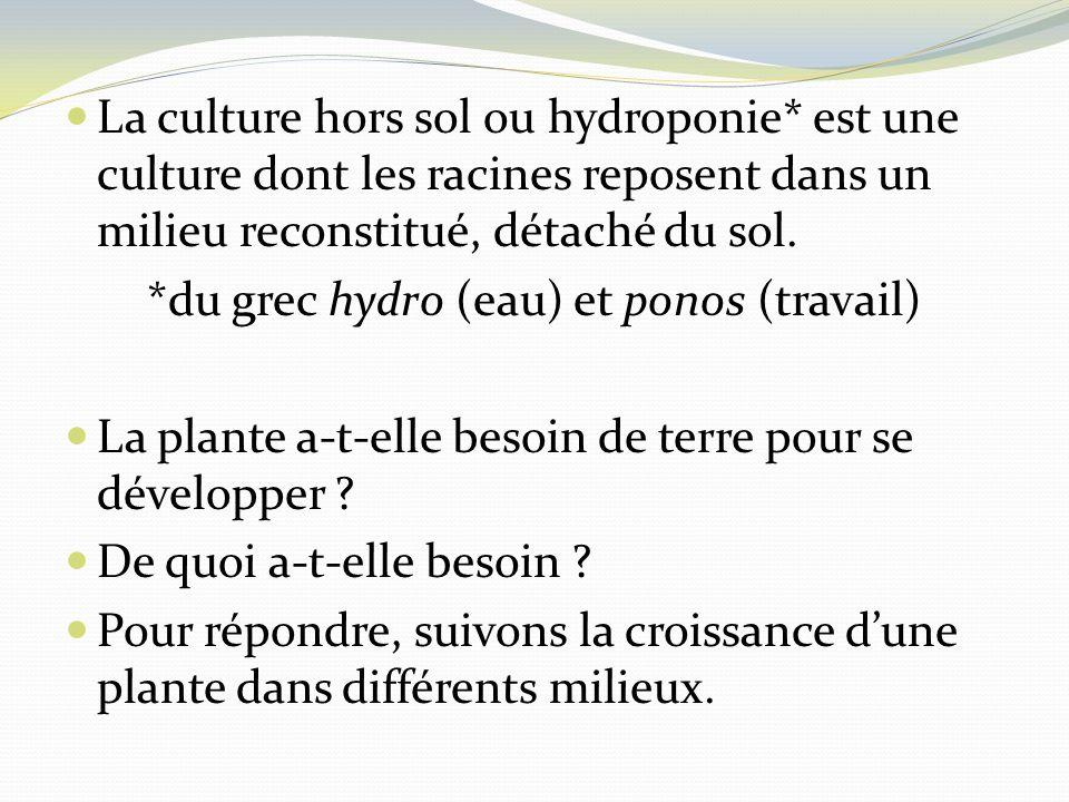 La culture hors sol ou hydroponie* est une culture dont les racines reposent dans un milieu reconstitué, détaché du sol. *du grec hydro (eau) et ponos