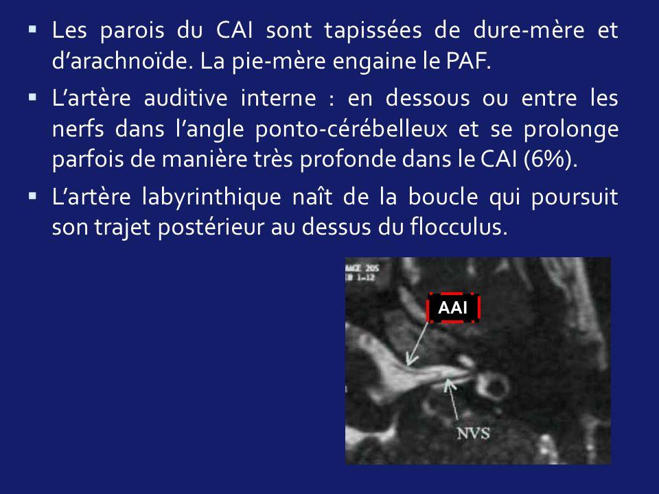 Les parois du CAI sont tapissées de dure-mère et darachnoïde. La pie-mère engaine le PAF. Lartère auditive interne : en dessous ou entre les nerfs dan