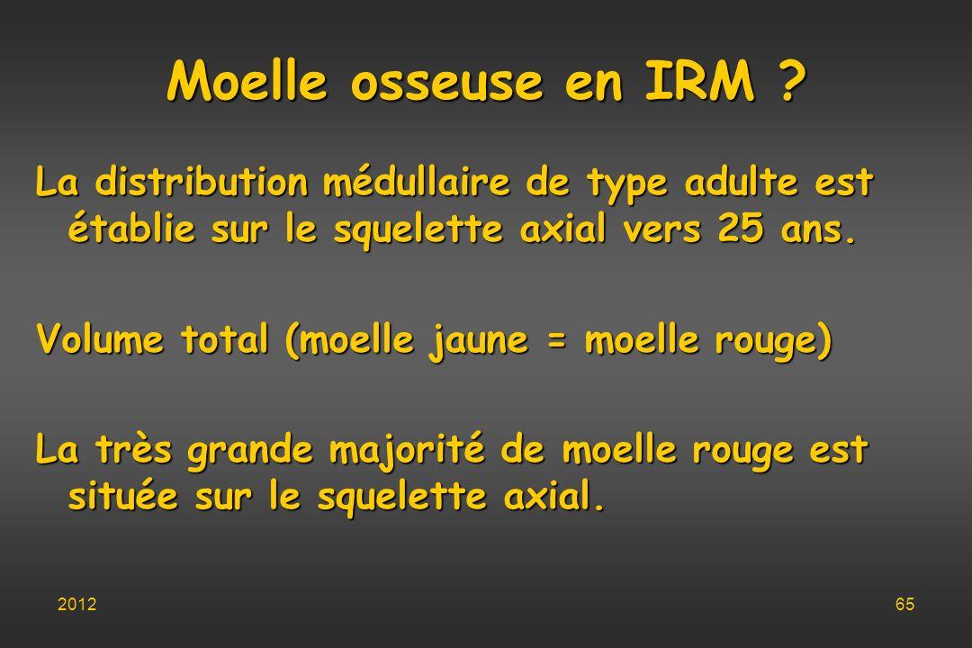 Moelle osseuse en IRM ? La distribution médullaire de type adulte est établie sur le squelette axial vers 25 ans. Volume total (moelle jaune = moelle