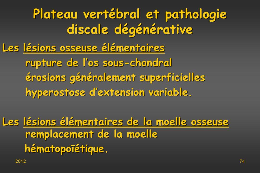 Plateau vertébral et pathologie discale dégénérative Les lésions osseuse élémentaires rupture de los sous-chondral érosions généralement superficielle
