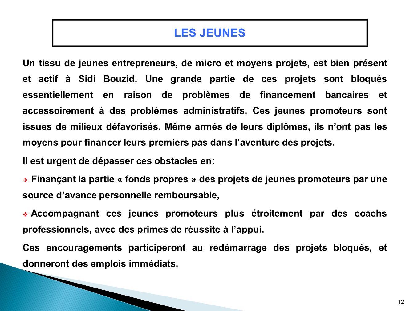 LES JEUNES Un tissu de jeunes entrepreneurs, de micro et moyens projets, est bien présent et actif à Sidi Bouzid. Une grande partie de ces projets son