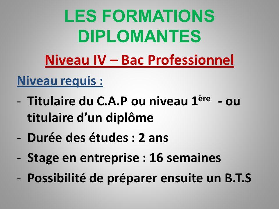 LES FORMATIONS DIPLOMANTES Niveau V – C.A.P Niveau requis : -Post bac, fin de terminale ou fin de 1 ère -Durée des études : 1 an -Stage en entreprise