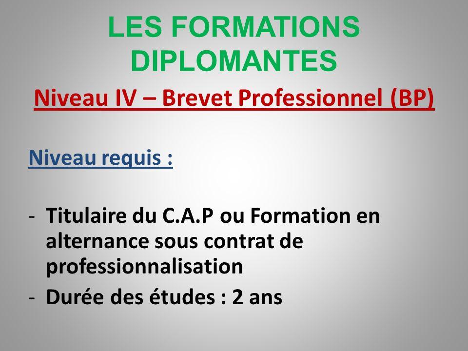 LES FORMATIONS DIPLOMANTES Niveau IV – Bac Professionnel Niveau requis : -Titulaire du C.A.P ou niveau 1 ère - ou titulaire dun diplôme -Durée des étu