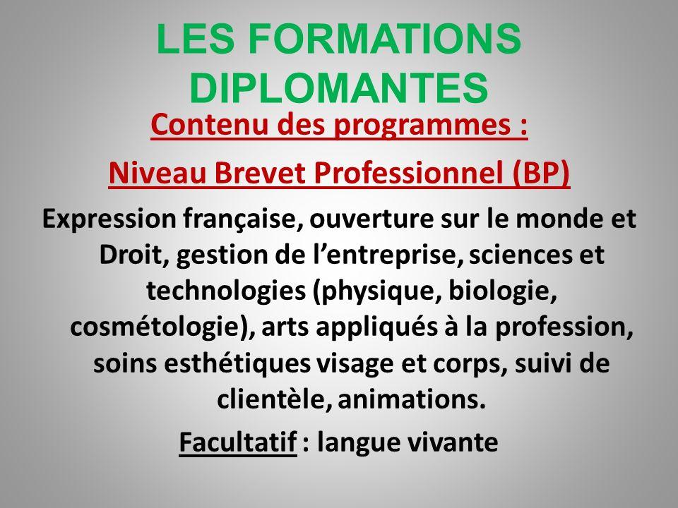 LES FORMATIONS DIPLOMANTES Contenu des programmes niveau Bac Pro Expression française, histoire, géographie, anglais, sciences physiques et mathématiq