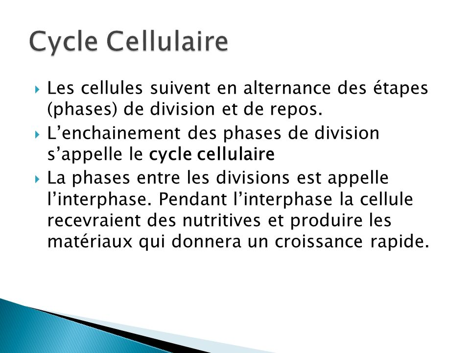 Les cellules suivent en alternance des étapes (phases) de division et de repos. Lenchainement des phases de division sappelle le cycle cellulaire La p