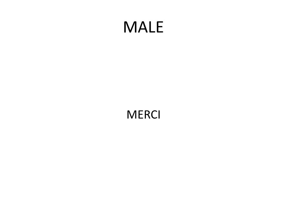 MALE MERCI
