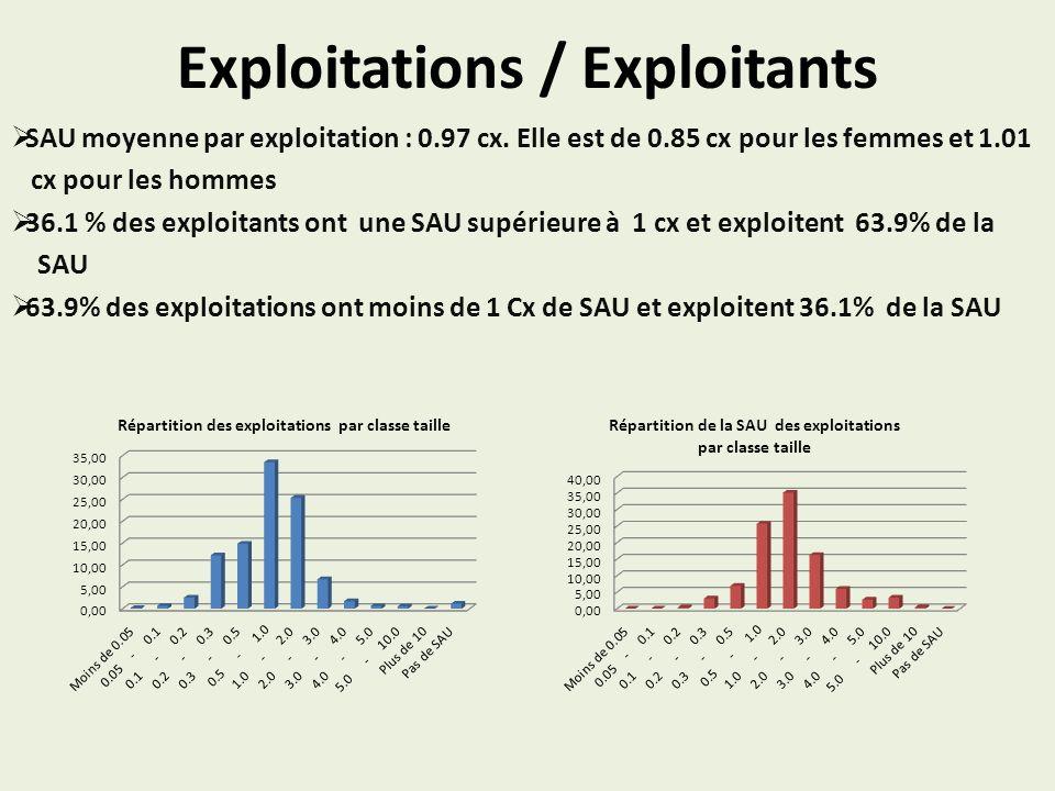 Exploitations / Exploitants SAU moyenne par exploitation : 0.97 cx. Elle est de 0.85 cx pour les femmes et 1.01 cx pour les hommes 36.1 % des exploita