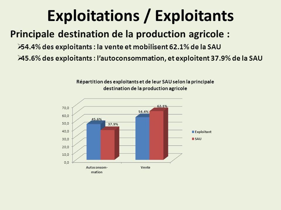 Exploitations / Exploitants Principale destination de la production agricole : 54.4% des exploitants : la vente et mobilisent 62.1% de la SAU 45.6% de