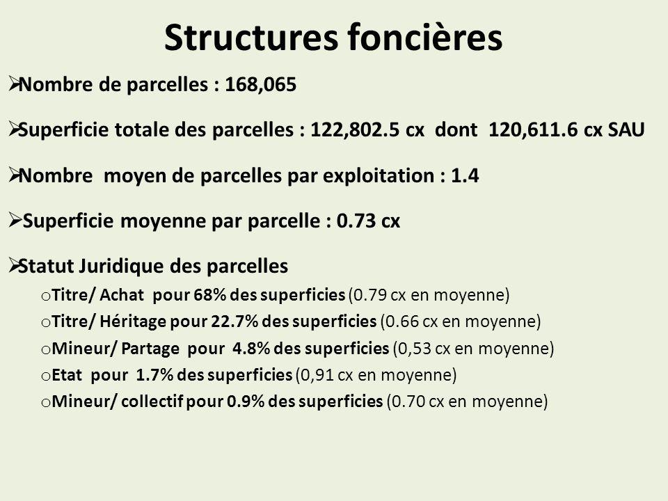 Structures foncières Nombre de parcelles : 168,065 Superficie totale des parcelles : 122,802.5 cx dont 120,611.6 cx SAU Nombre moyen de parcelles par