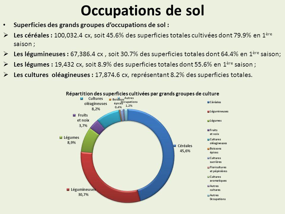 Occupations de sol Superficies des grands groupes doccupations de sol : Les céréales : 100,032.4 cx, soit 45.6% des superficies totales cultivées dont
