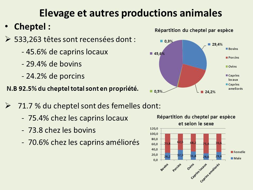 Elevage et autres productions animales Cheptel : 533,263 têtes sont recensées dont : - 45.6% de caprins locaux - 29.4% de bovins - 24.2% de porcins N.