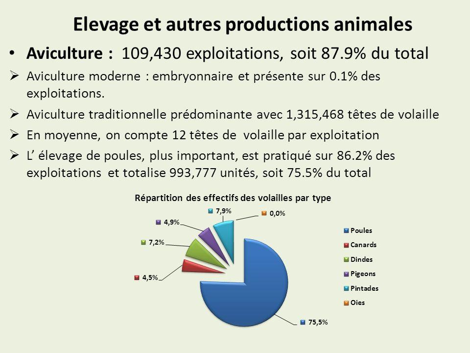 Elevage et autres productions animales Aviculture : 109,430 exploitations, soit 87.9% du total Aviculture moderne : embryonnaire et présente sur 0.1%