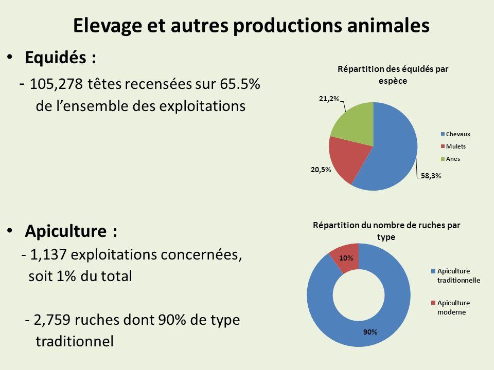 Elevage et autres productions animales Equidés : - 105,278 têtes recensées sur 65.5% de lensemble des exploitations Apiculture : - 1,137 exploitations