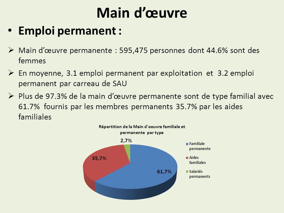 Main dœuvre Emploi permanent : Main dœuvre permanente : 595,475 personnes dont 44.6% sont des femmes En moyenne, 3.1 emploi permanent par exploitation