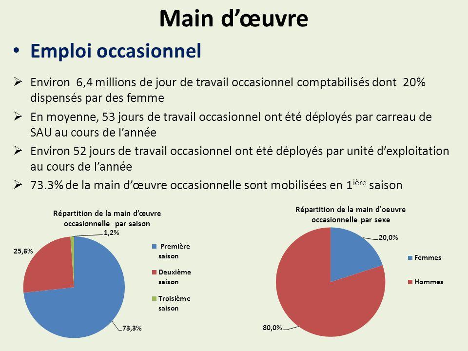 Main dœuvre Emploi occasionnel Environ 6,4 millions de jour de travail occasionnel comptabilisés dont 20% dispensés par des femme En moyenne, 53 jours