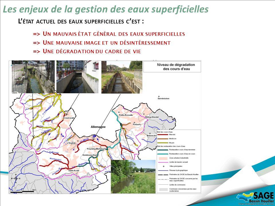 Une mauvaise qualité chimique des eaux Une dégradation importante de la qualité physique des rivières Des zones humides en partie protégées Les enjeux