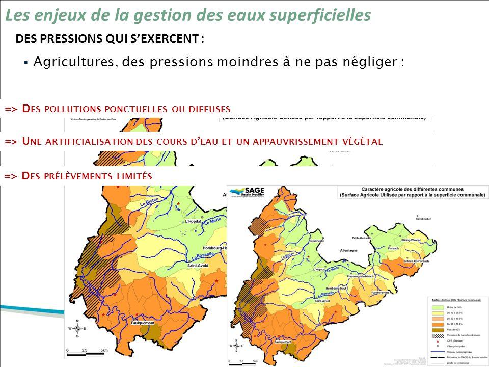 DES PRESSIONS QUI SEXERCENT : Les enjeux de la gestion des eaux superficielles Agricultures, des pressions moindres à ne pas négliger : => D ES POLLUT
