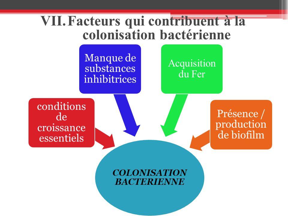 COLONISATION BACTERIENNE conditions de croissance essentiels Manque de substances inhibitrices Acquisition du Fer Présence / production de biofilm VII