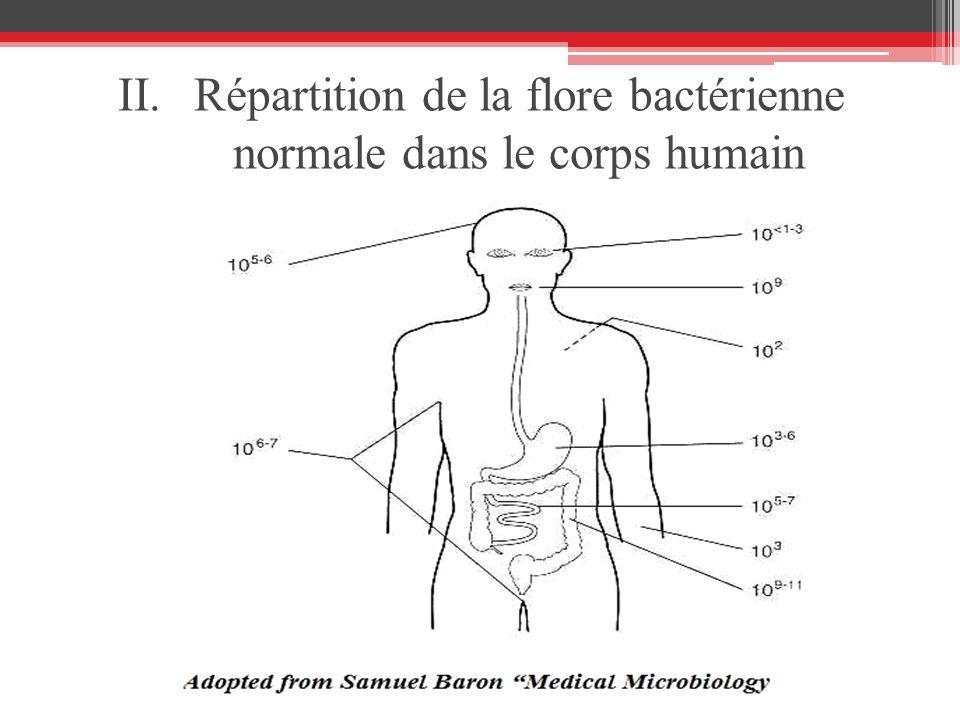 II.Répartition de la flore bactérienne normale dans le corps humain