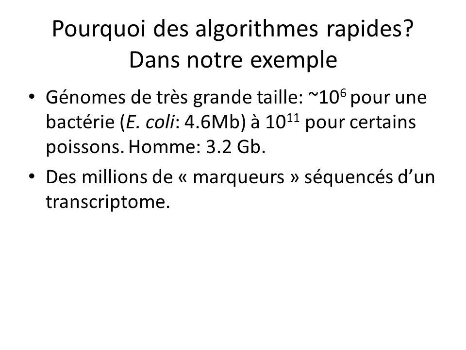 Pourquoi des algorithmes rapides? Dans notre exemple Génomes de très grande taille: ~10 6 pour une bactérie (E. coli: 4.6Mb) à 10 11 pour certains poi