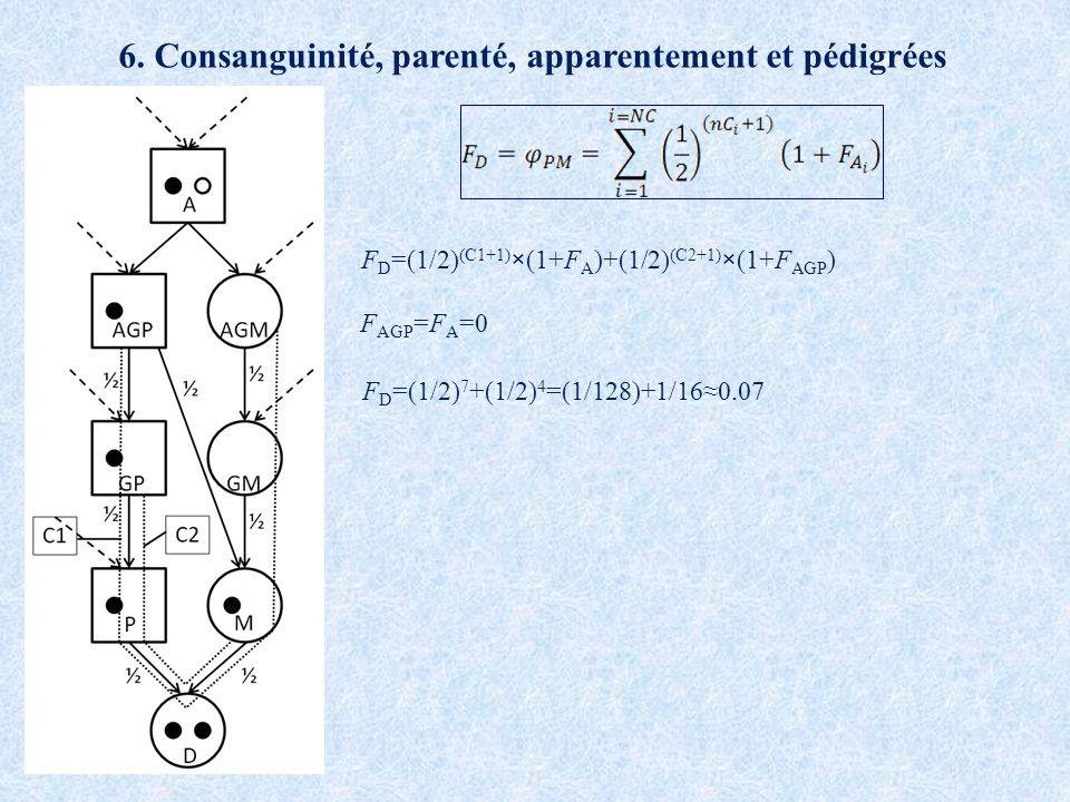 F D =(1/2) (C1+1) ×(1+F A )+(1/2) (C2+1) ×(1+F AGP ) F AGP =F A =0 F D =(1/2) 7 +(1/2) 4 =(1/128)+1/160.07 6. Consanguinité, parenté, apparentement et