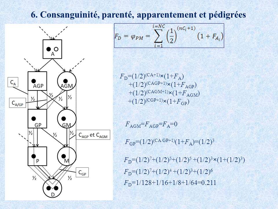 F D =(1/2) (CA+1) ×(1+F A ) +(1/2) (CAGP+1) ×(1+F AGP ) +(1/2) (CAGM+1) ×(1+F AGM ) +(1/2) (CGP+1) ×(1+F GP ) F AGM =F AGP =F A =0 F GP =(1/2) (CA/GP+