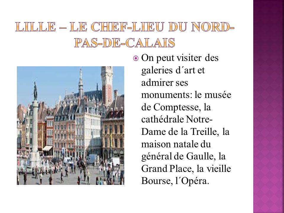 On peut visiter des galeries d΄art et admirer ses monuments: le musée de Comptesse, la cathédrale Notre- Dame de la Treille, la maison natale du génér