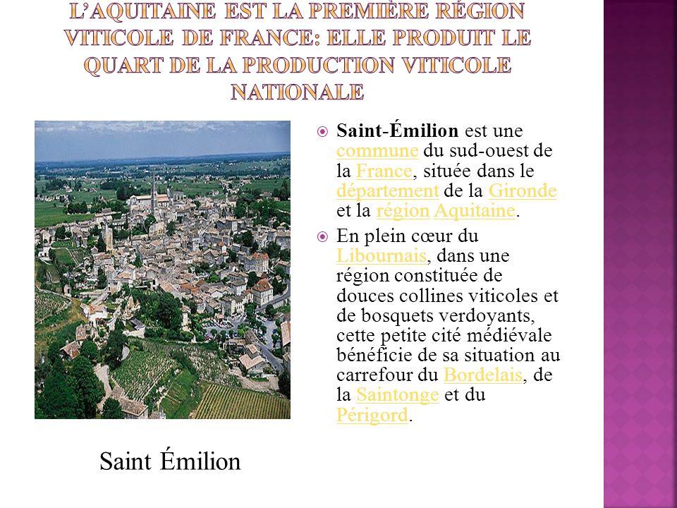 Saint-Émilion est une commune du sud-ouest de la France, située dans le département de la Gironde et la région Aquitaine. communeFrance départementGir