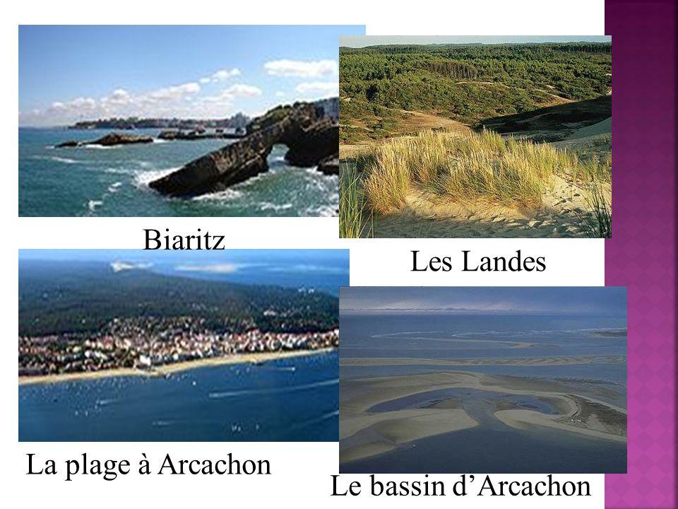 Biaritz La plage à Arcachon Le bassin dArcachon Les Landes