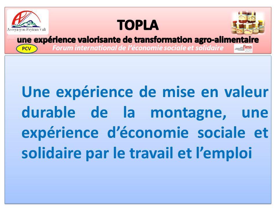 Une expérience de mise en valeur durable de la montagne, une expérience déconomie sociale et solidaire par le travail et lemploi Forum international de léconomie sociale et solidaire PCV