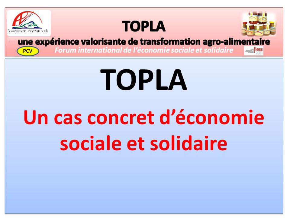 TOPLA Un cas concret déconomie sociale et solidaire TOPLA Un cas concret déconomie sociale et solidaire Forum international de léconomie sociale et solidaire PCV