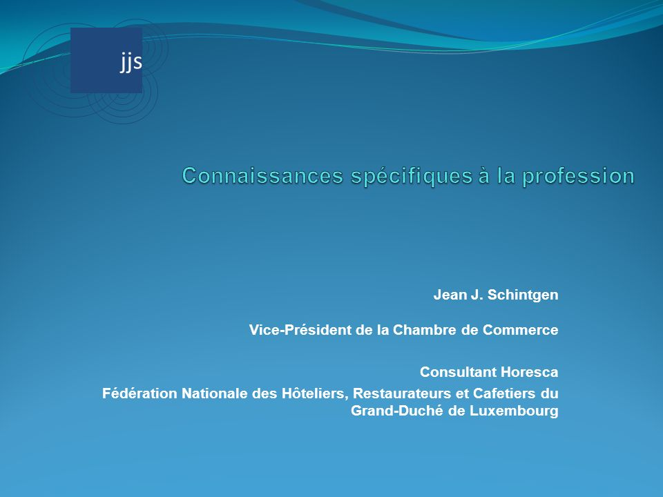 Jean J. Schintgen Vice-Président de la Chambre de Commerce Consultant Horesca Fédération Nationale des Hôteliers, Restaurateurs et Cafetiers du Grand-