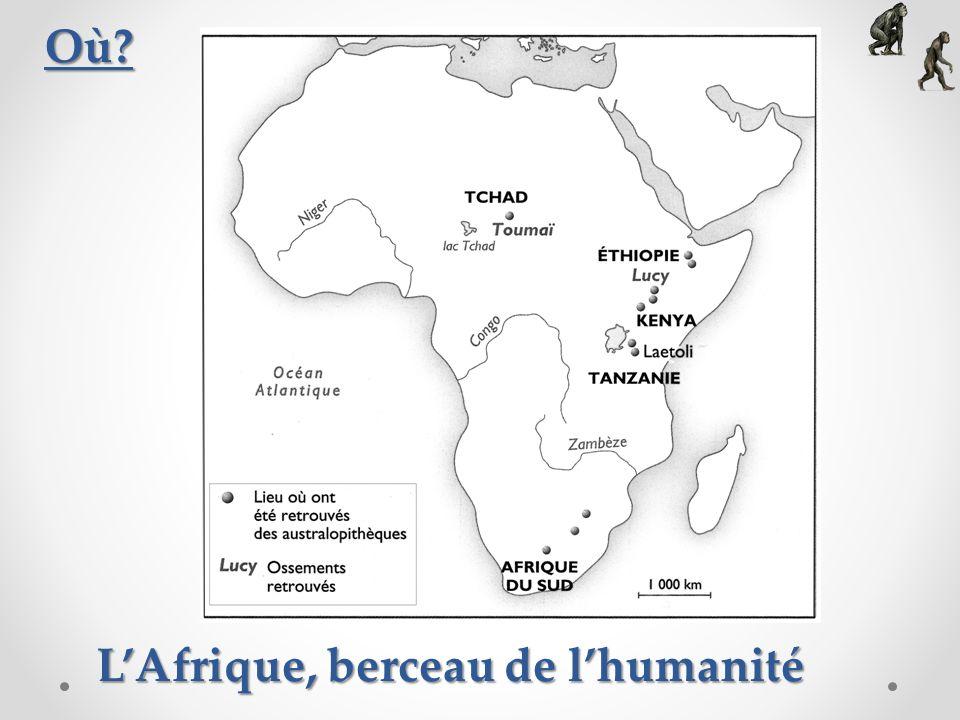 Toumaï : Un des premiers hominidés Le crâne de Toumaï (original) Le crâne de Toumaï (reconstitué en résine) Une reconstitution de Toumaï Le crâne de Toumaï a été découvert au Tchad (Afrique centrale), en 2001, par une équipe darchéologues dirigée par Michel Brunet.
