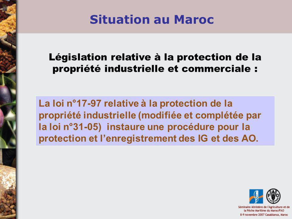Législation relative à la protection de la propriété industrielle et commerciale : La loi n°17-97 relative à la protection de la propriété industriell