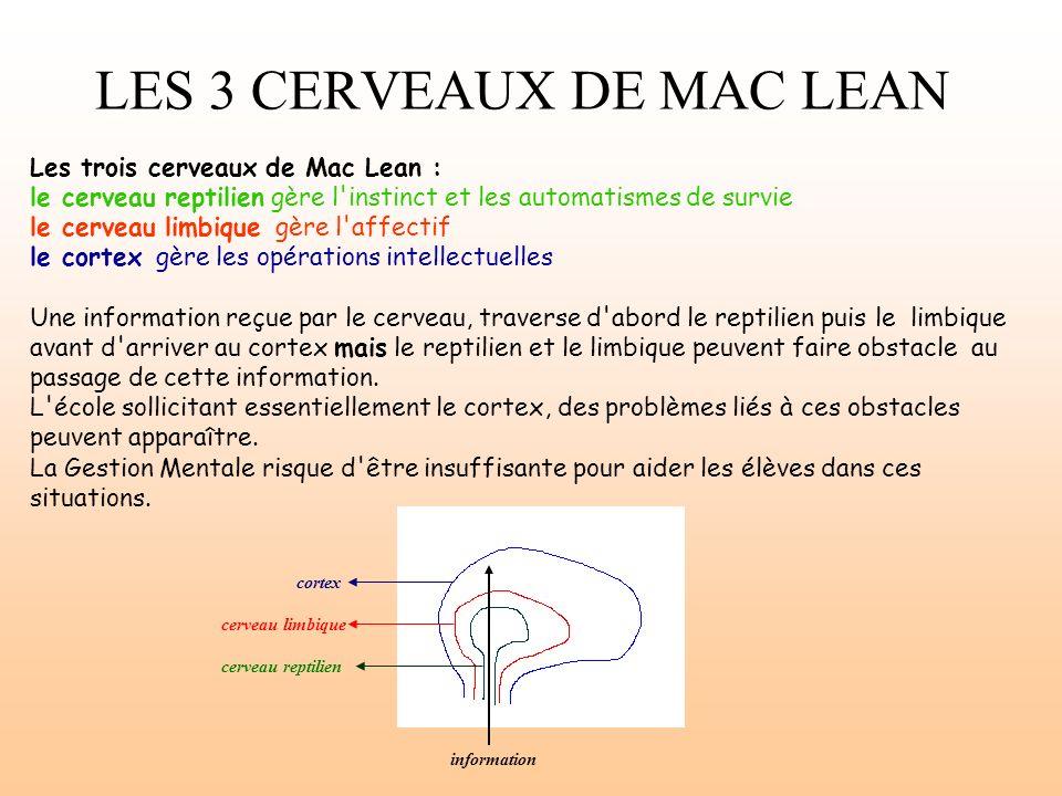 LES 3 CERVEAUX DE MAC LEAN Les trois cerveaux de Mac Lean : le cerveau reptilien gère l'instinct et les automatismes de survie le cerveau limbique gèr