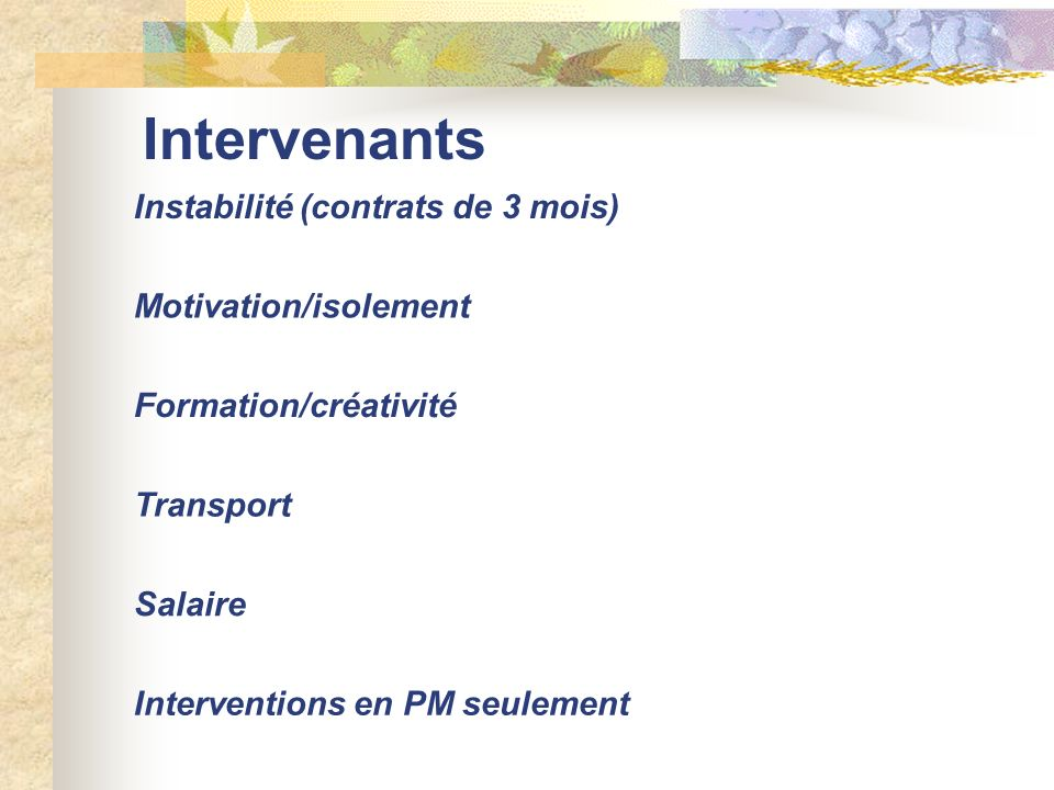 Intervenants Instabilité (contrats de 3 mois) Motivation/isolement Formation/créativité Transport Salaire Interventions en PM seulement