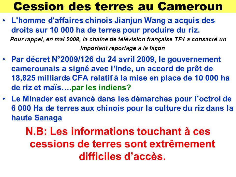 Cession des terres au Cameroun L homme d affaires chinois Jianjun Wang a acquis des droits sur 10 000 ha de terres pour produire du riz.