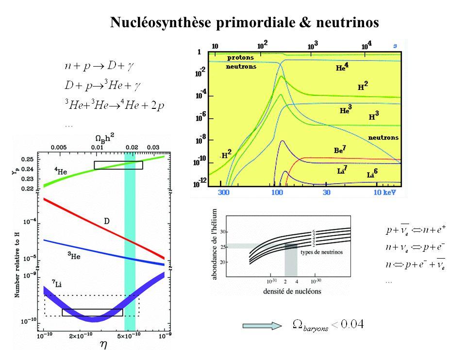 Nucléosynthèse primordiale & neutrinos