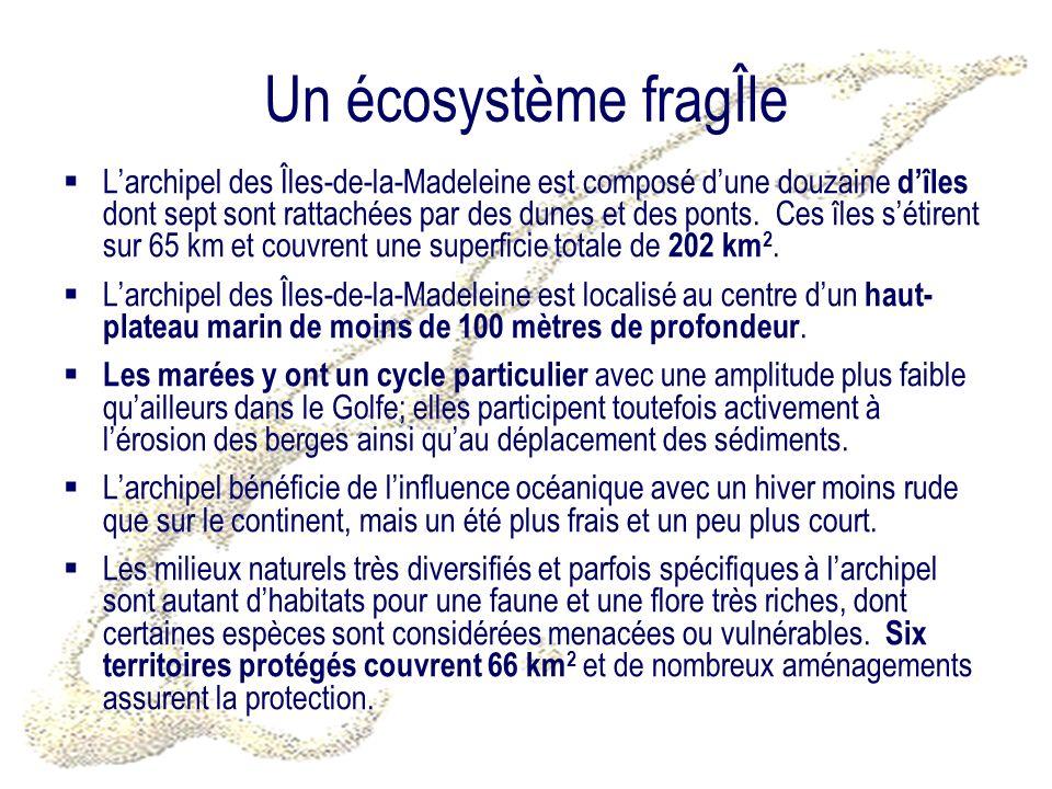 Un écosystème fragÎle Larchipel des Îles-de-la-Madeleine est composé dune douzaine dîles dont sept sont rattachées par des dunes et des ponts.