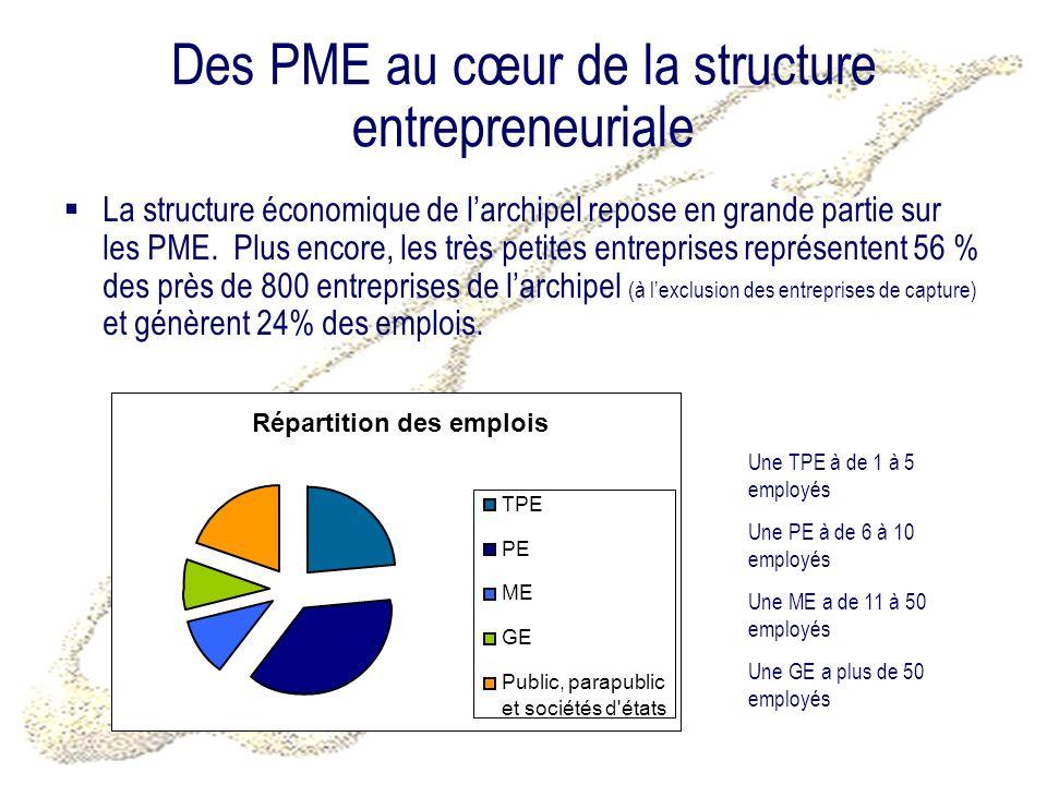 Des PME au cœur de la structure entrepreneuriale La structure économique de larchipel repose en grande partie sur les PME. Plus encore, les très petit